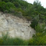 Roadcut outcrop of the Kalamos Fault